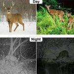 Caméra de chasse, 2018 New Mini étanche HD Wildlife Trail caméra, 5 méga pixels caméra numérique infrarouge caché Sports motion caméra H501 de la marque Greencolorful image 2 produit