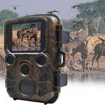 Caméra de chasse, 2018 New Mini étanche HD Wildlife Trail caméra, 5 méga pixels caméra numérique infrarouge caché Sports motion caméra H501 de la marque Greencolorful image 3 produit