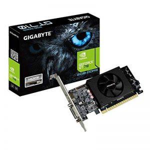 Gigabyte GV-N710D5-2GL GeForce GT 710 2Go GDDR5 Carte Graphique - Cartes Graphiques (GeForce GT 710, 2 Go, GDDR5, 64 bit, 4096 x 2160 Pixels, PCI Express x8 2.0) de la marque Gigabyte image 0 produit